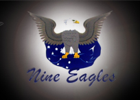 NINE EAGLES RADIO CONTROL
